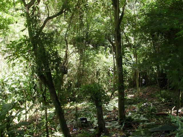 Terreno Distrito Metropolitano>Caracas>La Trinidad - Venta:28.000 Precio Referencial - codigo: 21-9294