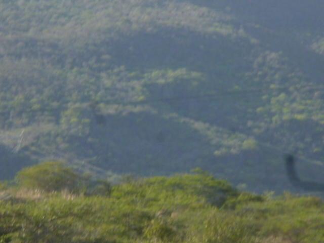 Casa Lara>Barquisimeto>El Manzano - Venta:20.000 Precio Referencial - codigo: 21-9559