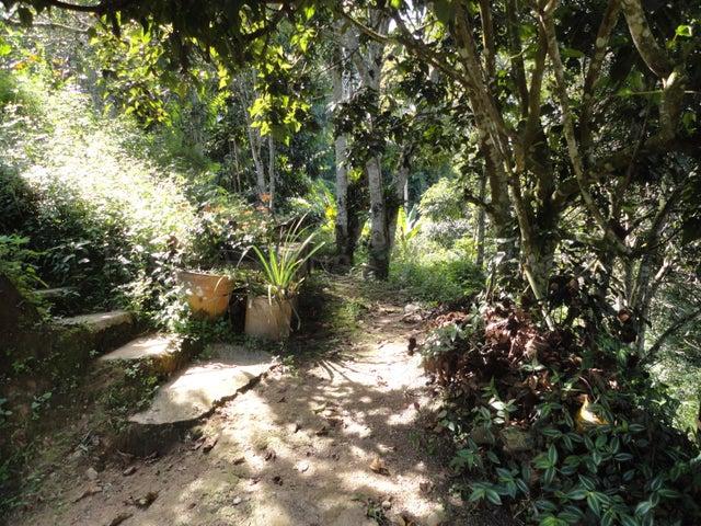 Casa Distrito Metropolitano>Caracas>Parque Caiza - Venta:40.000 Precio Referencial - codigo: 21-10547