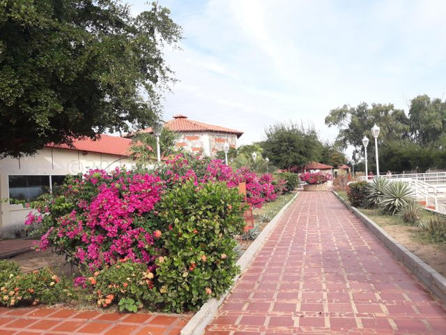 Club Campestre Zulia>Santa Rita>El Mene - Venta:650.000 Precio Referencial - codigo: 21-11672