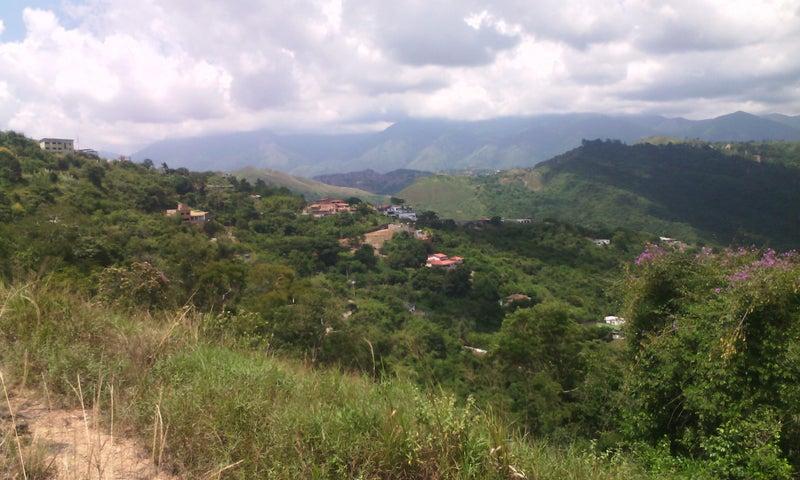 Terreno Distrito Metropolitano>Caracas>Caicaguana - Venta:4.000 Precio Referencial - codigo: 21-12347