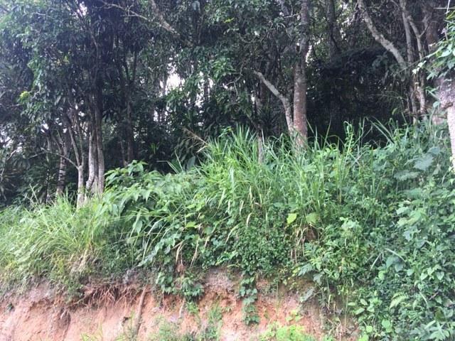 Terreno Distrito Metropolitano>Caracas>El Hatillo - Venta:8.500 Precio Referencial - codigo: 21-12383