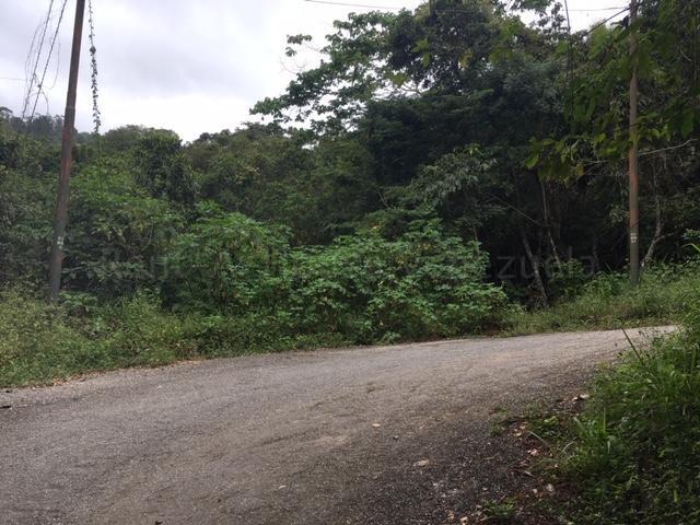 Terreno Distrito Metropolitano>Caracas>El Hatillo - Venta:5.000 Precio Referencial - codigo: 21-12473