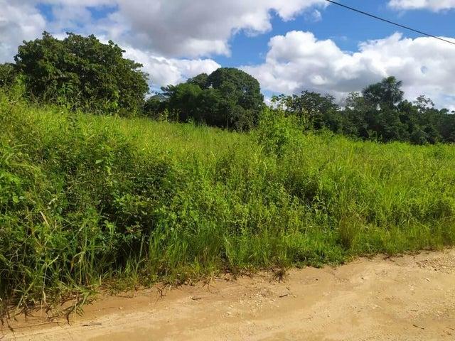 Terreno Carabobo>Municipio Libertador>Santa Isabel - Venta:10.000 Precio Referencial - codigo: 21-13206