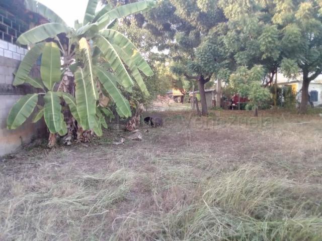 Terreno Zulia>Ciudad Ojeda>Carretera O - Venta:9.000 Precio Referencial - codigo: 21-14062