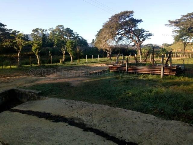 Terreno Carabobo>Belen>Municipio Carlos Arvelo - Venta:400.000 Precio Referencial - codigo: 21-16890
