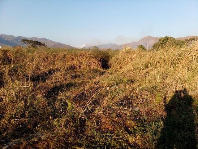 Terreno Carabobo>Municipio San Diego>Villa Jardin - Venta:2.500 Precio Referencial - codigo: 21-16870