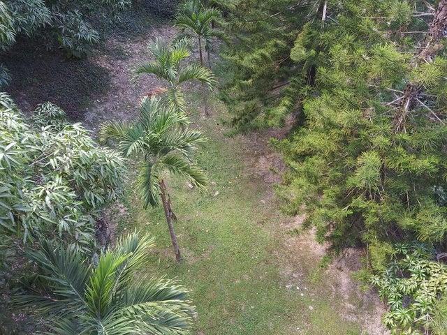 Apartamento Distrito Metropolitano>Caracas>Manzanares - Alquiler:350 Precio Referencial - codigo: 21-17568