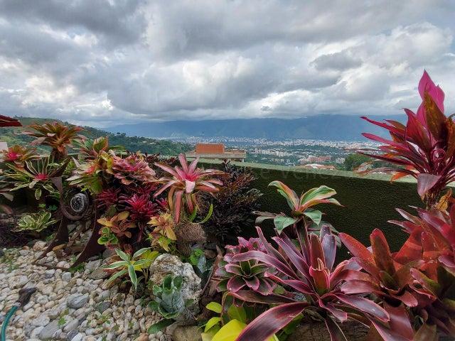 Apartamento Distrito Metropolitano>Caracas>Los Naranjos del Cafetal - Alquiler:1.100 Precio Referencial - codigo: 21-17656