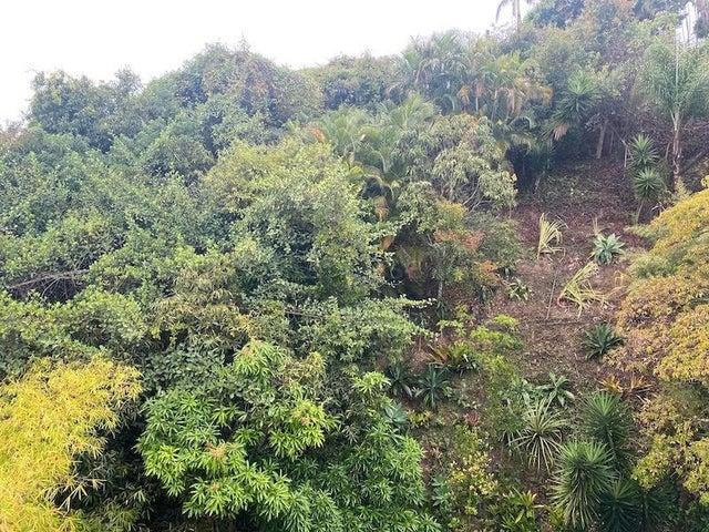 Apartamento Distrito Metropolitano>Caracas>Cumbres de Curumo - Venta:152.000 Precio Referencial - codigo: 21-18181