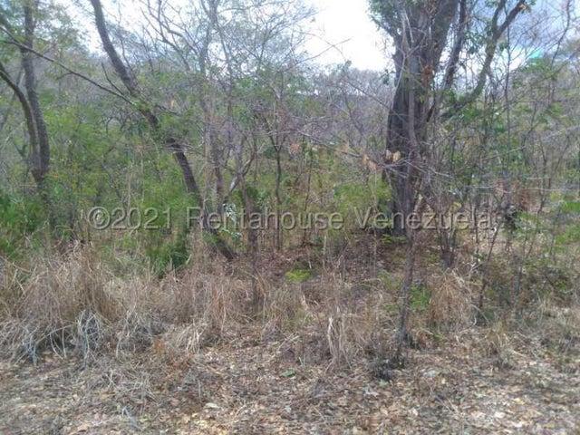 Terreno Aragua>Villa de Cura>Hacienda Barrancon - Venta:55.700 Precio Referencial - codigo: 21-19674