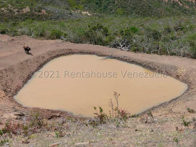 Terreno Merida>Lagunillas>Las Gonzales - Venta:130.000 Precio Referencial - codigo: 21-21295