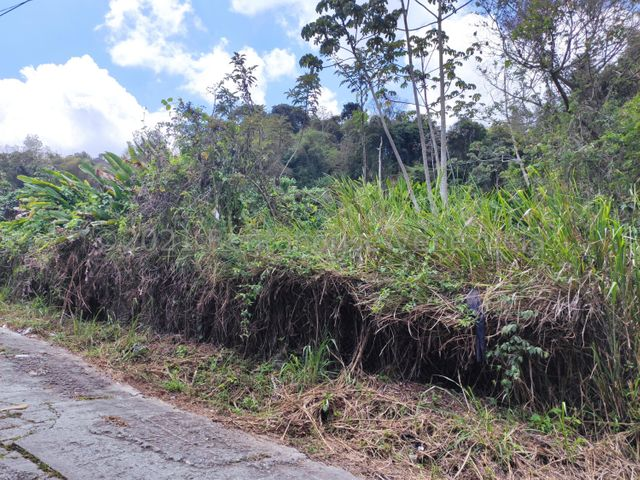 Terreno Distrito Metropolitano>Caracas>Oripoto - Venta:48.000 Precio Referencial - codigo: 21-27607