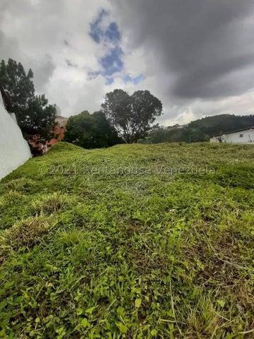 Terreno Distrito Metropolitano>Caracas>Los Naranjos del Cafetal - Venta:150.000 Precio Referencial - codigo: 22-4048