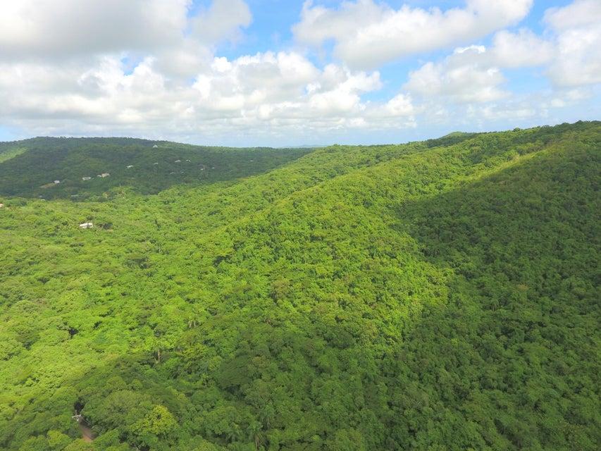 Auto For Sale St Croix Usvi: 3 Orange Grove WE, St Croix, Virgin Islands, 00840