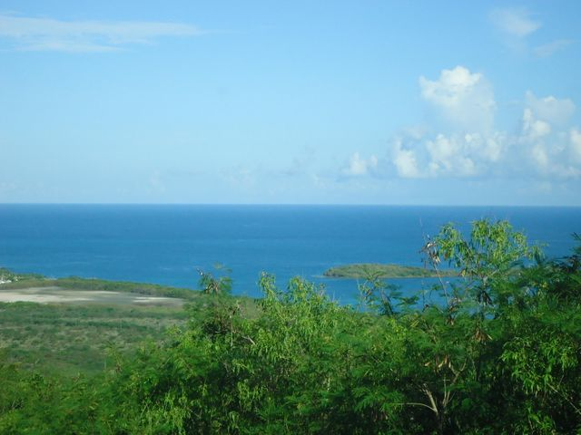 116 Green Cay EA,