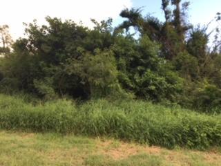 623 Mon Bijou KI, St. Croix,