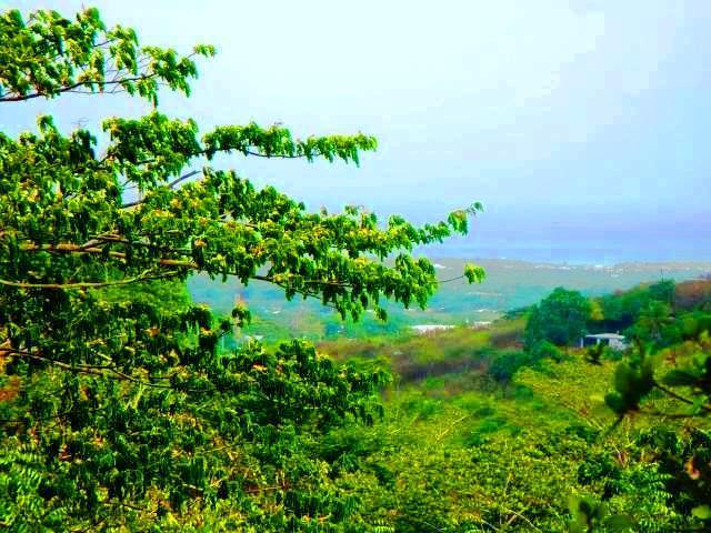 Caribbean Sea Views!!