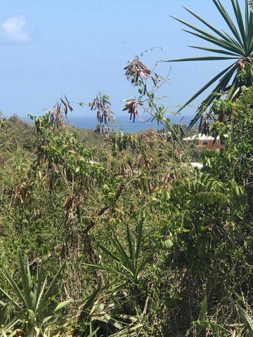 34 & 35 Hermon Hill CO, St. Croix,