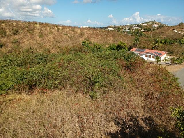 95 Mt. Pleasant EA, St. Croix,