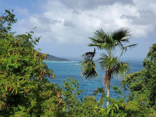 Beautiful water views of Hans Lollick a US cay