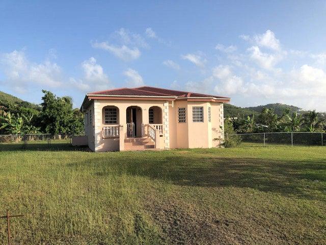 40 Mountain PR, St. Croix,
