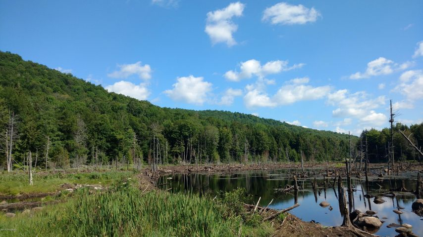 Recreational Land