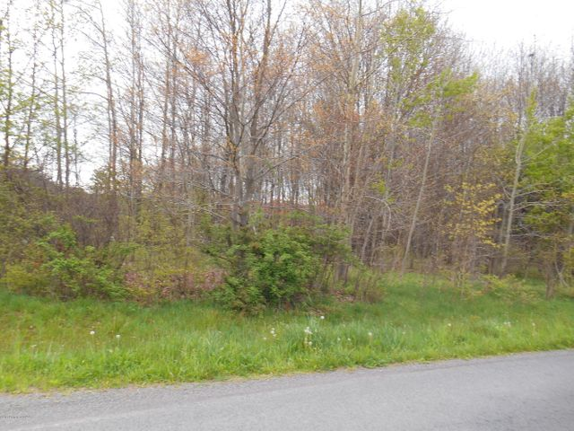 AIRPORT Road, Drums, PA 18222