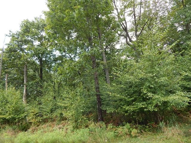 Bear Creek Boulevard, Bear Creek, PA 18702