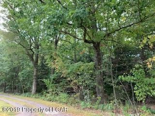 14 Woodland Avenue, Mountain Top, PA 18707
