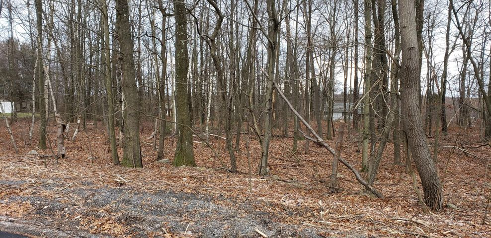 Hazle Township Building Lot! Do you have your house plans ready?  This 3/4 acre wooded lot in Pardeesville might just be perfect for you!  Build your dream home here.  You are away from the hustle and bustle of the city yet only minutes away from shopping and interstate access. Public utilities available.