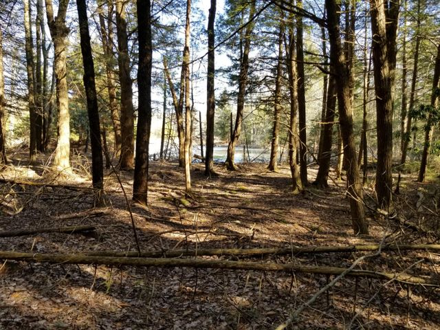 Beautiful location for your new home, or a weekend getaway cabin! Surround yourself with nature on this private, wooded, lot. Easy access to state game lands, state forest, state parks and just minutes from Jack Frost & Big Boulder! Property is adjacent on 2 sides to Pocono Lake Preserve. No HOA dues!