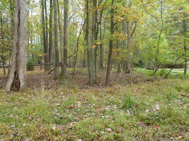 Hickory Hills Lot - Nice building lot in a gated community. Level and wooded with public utilities available. Enjoy relaxing by the lake or pool!