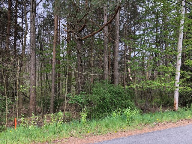 Get ready to build your dream home in the Valley on this acre lot! Public sewer is available, and a private well is needed. If you would like additional acreage, you are in luck, because there are two adjoining acres also currently for sale! The road frontage is on Freedom Road. Come out and get some fresh air and take a look today!