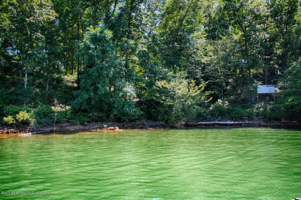 LOT 14 EAGLE POINTE ROAD, Double Springs, AL 35553