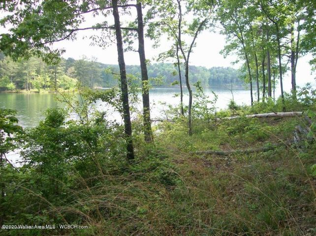 LOT 99 WINDWORD TRACT, Double Springs, AL 35553