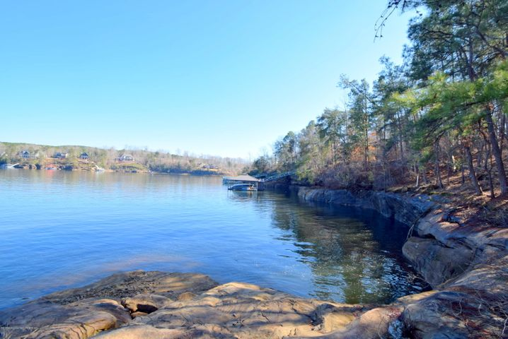 LOT 27 DISMAL BAY, Arley, AL 35541