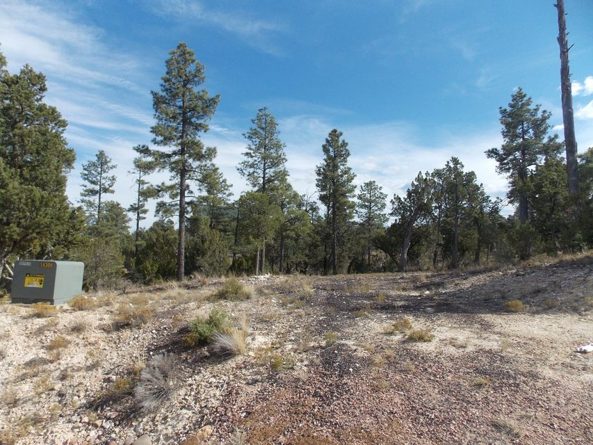 Gated Community - Trees - Paved streets - SEPTIC already installed.  What more could you ask for, this heavily treed 1.41 acre lot is just waiting for you to build your dream cabin in the cool mountain air.