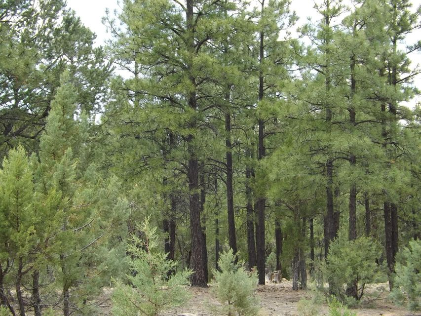Beautiful, level and heavily treed corner/cul-de-sac lot in High Country Pines. A perfect homesite to build your custom cabin in a much sought after subdivision in Heber AZ. Underground utilities, worry free sewer and maintained roads for easy four season access make this an ideal homesite.
