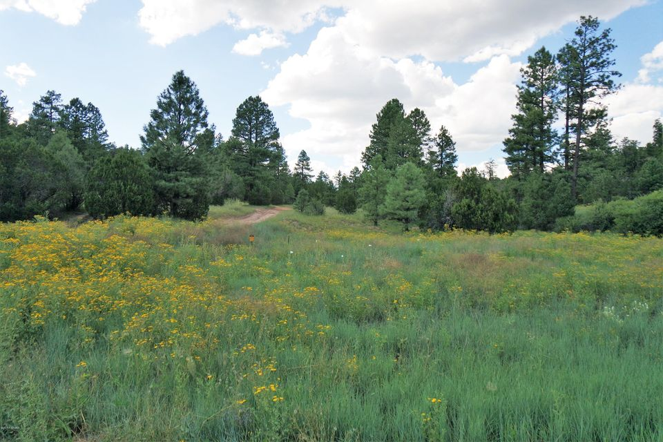 Beautiful 41.54 acre parcel in the cool pines of Heber Arizona. This lot has tons of character with its rolling hillsides, gorgeous tall pines, mixed vegetation and amazing views. Close to Highway 260 going through Heber and Overgaard. Convenient to shopping and restaurants. Perfect for your vacation getaway or forever ranch home.Buyer to Verify availability and distance to any and all utilities.