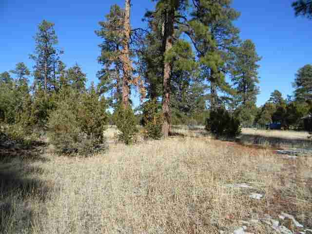 Fantastic, Rare parcel of land! 1.5 acres in town. Location, Location! Level lot with towering Ponderosa Pines. Bring horses too! Perfect site for your dream custom cabin or manufactured home. Quiet area for your High Country getaway. Three bedroom septic installed. Large parcels like this are hard to come by.