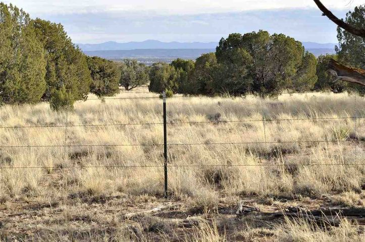 Lot 113 River Meadows Ranch, Concho, AZ 85924