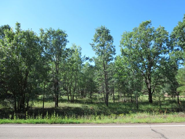 4333 Branding Iron Loop, Pinetop, AZ 85935