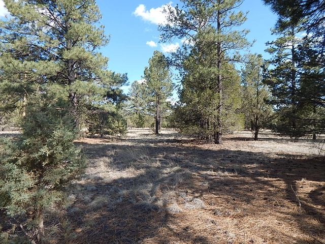 Lot 20 Escudilla, Nutrioso, AZ 85932