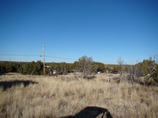 Level & buildable lot--mostly cleared of trees.