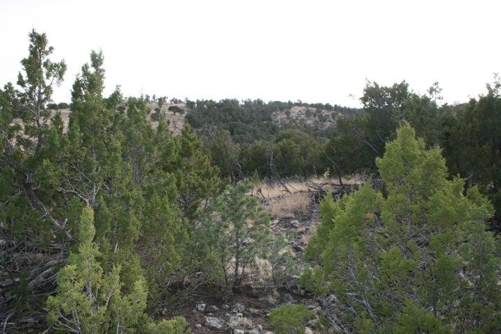 1875 Snowline Road, Eagar, AZ 85925