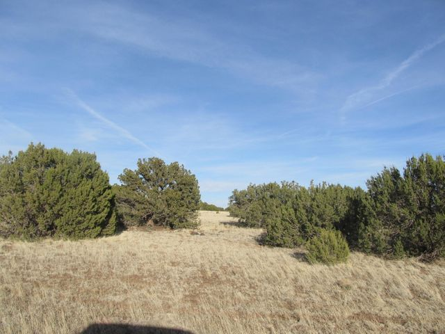 Lot 2076 CR 8082, Concho, AZ 85924