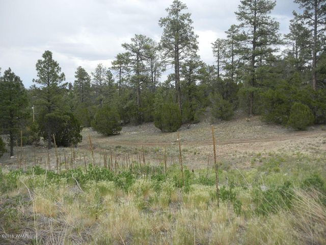 Absolutely beautiful tree-studded lot in one of Heber's elite housing development.  This large corner parcel would be perfect for building your summer or year-round cabin retreat.  Build on the hillside to provide an awesome view.