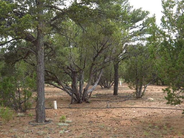 Superior 0.80 acre building lot for your custom cabin on a premium and nicely treed homesite in Mogollon Estates. Extremely level with underground utilities and a two bedroom septic already installed. Paved county maintained streets in a much coveted area of Overgaard.