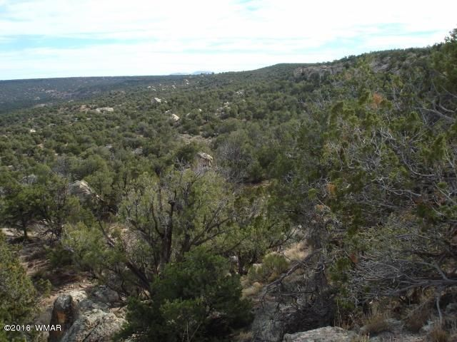 Lot 79 Pinon Valley Ranch Unit 2, Concho, AZ 85924